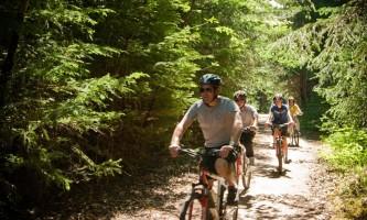 Sockeye cycle co day tours 2