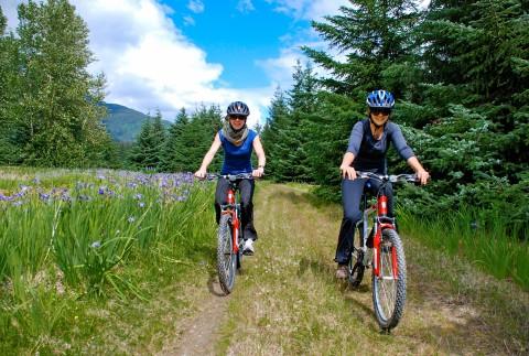 Two cyclists bike down an Alaskan wilderness trail.