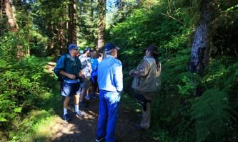 Taquan air bearviewing Trail at Neets Bay horz taquan neets bay bear adventure by floatplane
