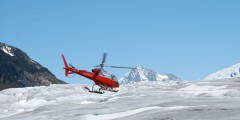 TEMSCO Skagway Glacier Discovery by Helicopter Tour