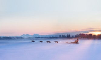 Winter Alaska Range Dog Team 2