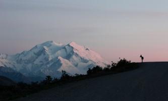 Traverse Alaska Denali Park Road MF201807310001