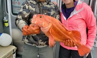 Underdog sport fishing IMG 0211