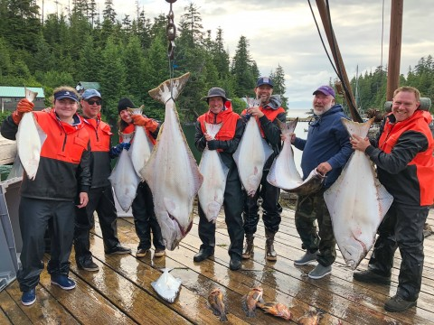 A group of people hold up fish that they've caught.