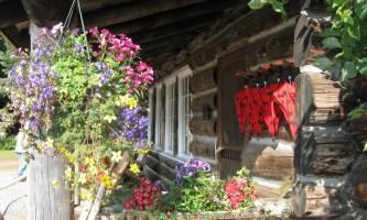 Wings airways taku glacier lodge Blooming porch rsz