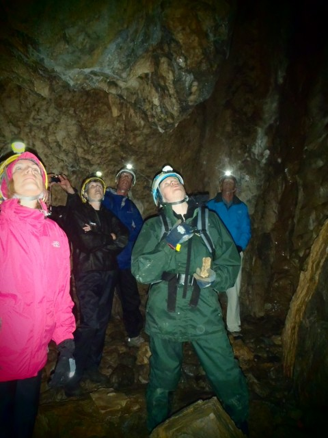 A group of people with helmets and headlamps explore a cave.