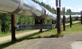 Alaska DSC01783 trans alaska pipeline
