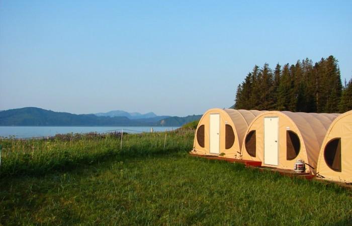 Alaska bear camp bear viewing bearcamp tents and bay great alaska bear camp