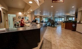Alaska Bear Lodge Alaska Org Listing jpg 0000s 0004 8 23 19 Bear Lodge HDR 076 2019