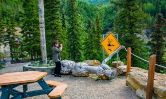 Shalley Villamarin Grande Denali Mosquito Sign alaska grande denali