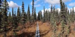 McKinley Bar Trail