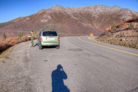 Primrose Ridge - Good Wildlife Viewing, Wildlflowers & Hiking (Mile 16)