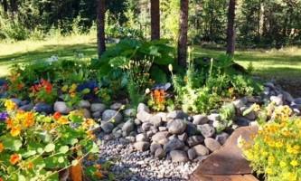 Alaska TKA Garden flowers 8 2017 kahiltna birch works