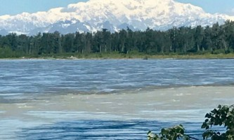 Alaska IMG 6365 kahiltna birch works