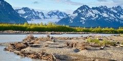 Copper River Highway Sheridan Glacier Background Wendy Ranney alaska cordova trip ideas