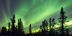 Fairbanks northern lights jeffrey cobble