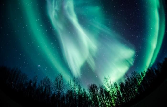 Northern lights talkeetna northern lights silas campbell2019