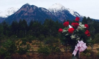 Alaska weddings roses heather chandler Heather Chandler