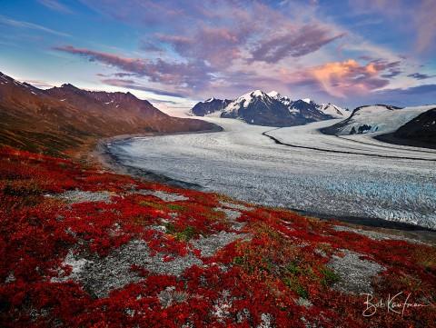 Red tundra above a glacier in Alaska in September
