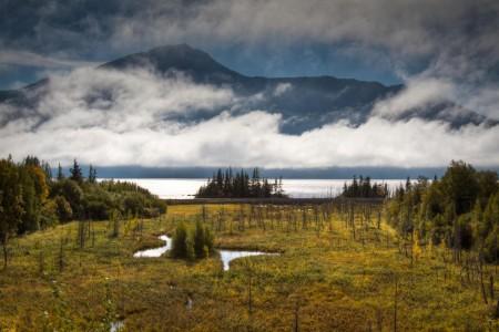 Best of Denali & Kenai Fjords - Tour 120
