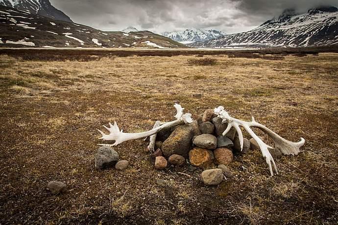 skolai-pass-wrangell-st-elias-national-park