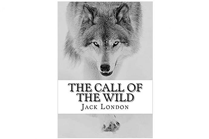Best books to read on alaska the call of the wild