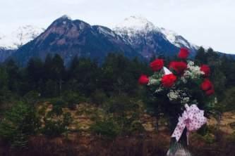 Alaska weddings roses heather chandler Heather Chandler