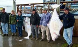 Anchorage halibut charters seward vs homer Homer June 04 006 Alaska Channel