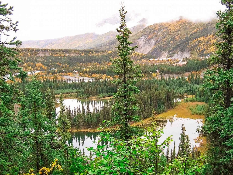 Hike Horseshoe Lake Trail