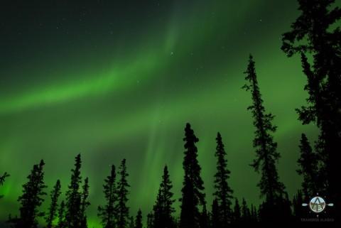 Northern lights adventures with Northern Alaska Tour Company