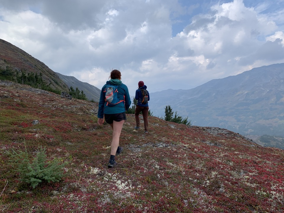 Haley Johnston AC Image Tips for AK Backpacking Tundra
