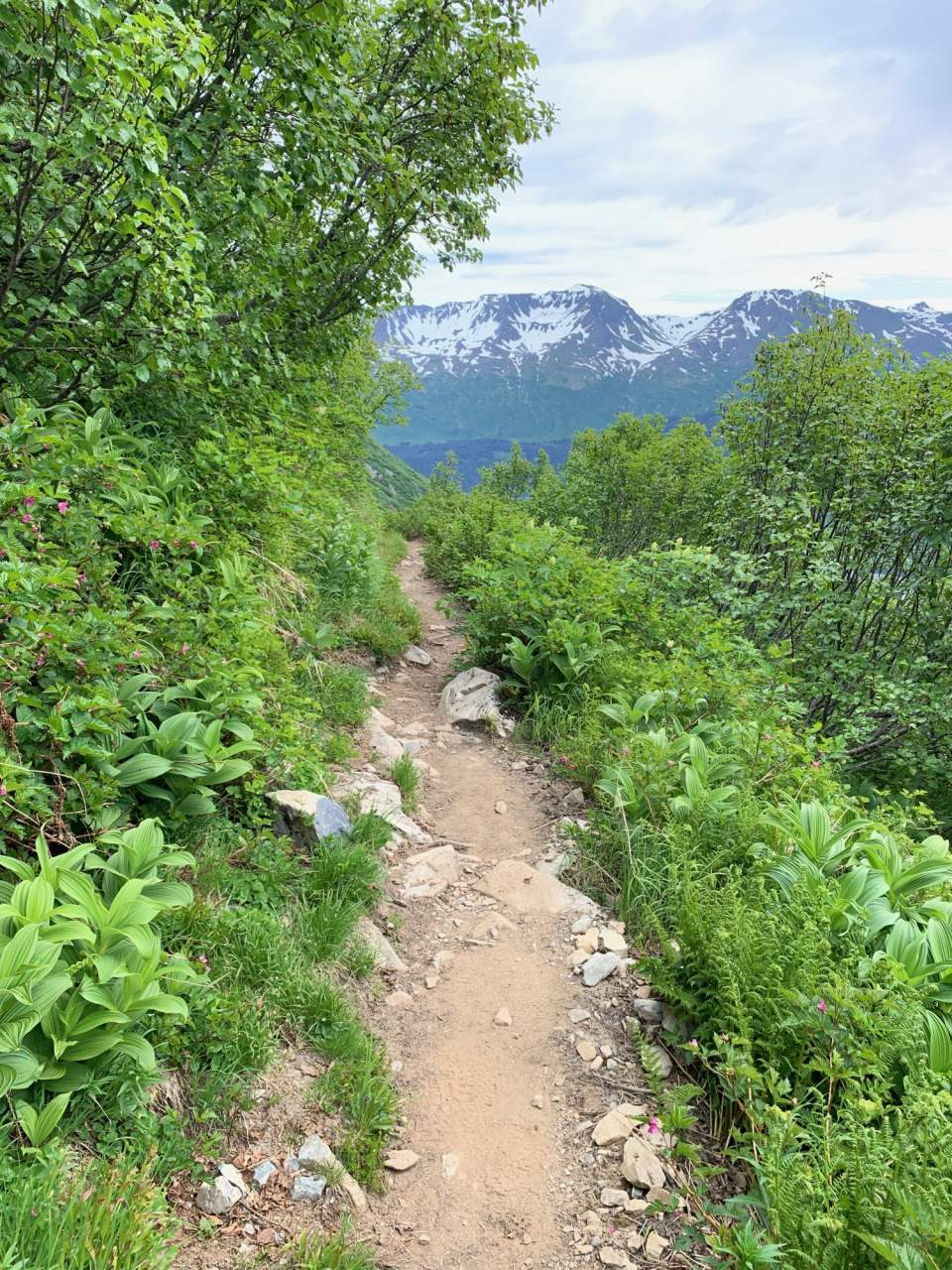Haley Johnston AC Image Tips for AK Backpacking Trails