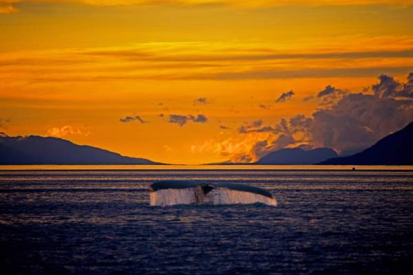 alaska-weather-daylight-hours