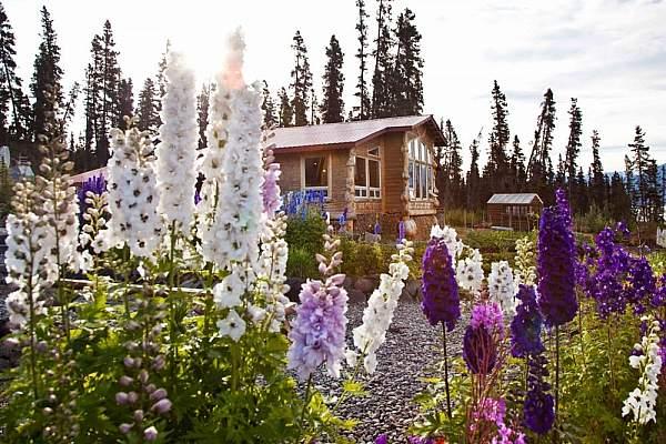 alaska-wilderness-lodges-resorts