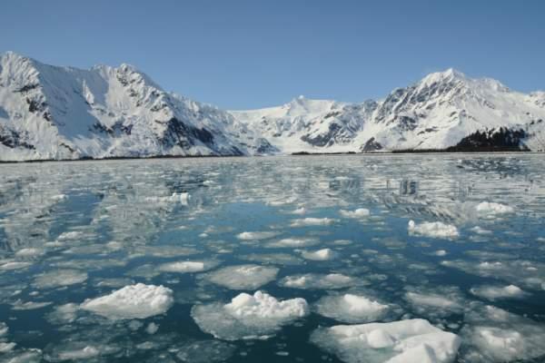 seward-kenai-fjords