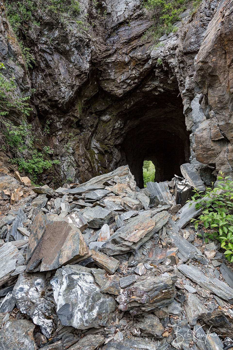 16 A0241 Copper River Abandoned Tunnel jpg