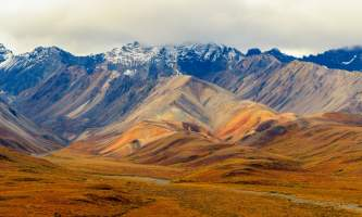National Parks Photos Alexyn Scheller Denali National Park 0 K8 A8078