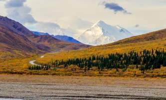 National Parks Photos Alexyn Scheller Denali National Park 0 K8 A8118