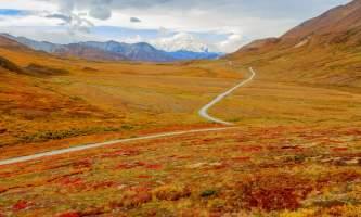 National Parks Photos Alexyn Scheller Denali National Park 0 K8 A8146