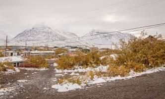 National Parks Photos Alexyn Scheller Gates of the Arctic National Park 0 K8 A7669