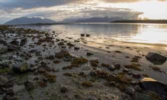 National Parks Photos Alexyn Scheller Glacier Bay National Park 0 K8 A7308