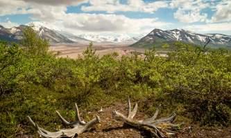 National Parks Photos Alexyn Scheller Katmai National Park Valley of 10000 Smokes 11