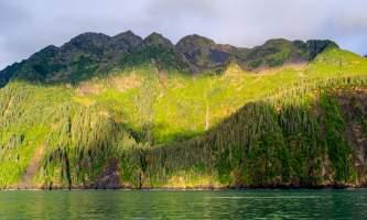 National Parks Photos Alexyn Scheller Kenai Fjords National Park 0 K8 A8497