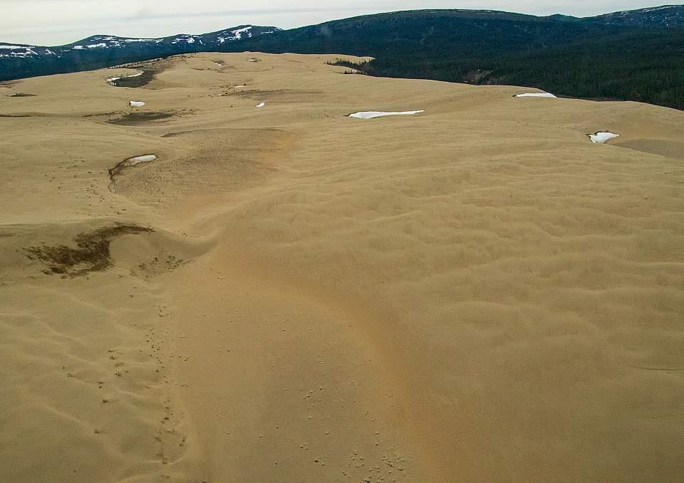 Sand dunes in Kobuk Valley National Park
