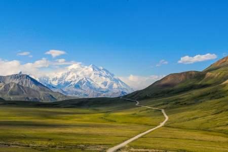 Humans denali national park jeannine bryan