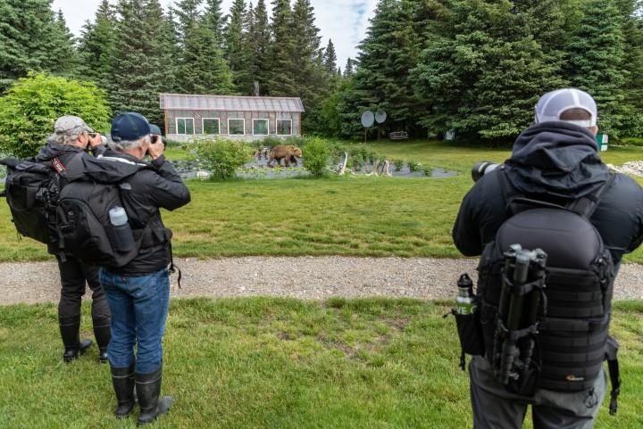 Jeff Schultz Bear Viewing Lake Clark 190618 5 F9067