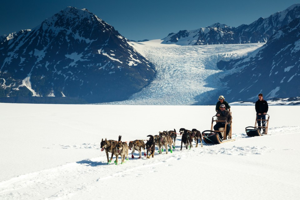 Jeff Schultz Mushing Tour Chugach Mountains 150613 4 M6744