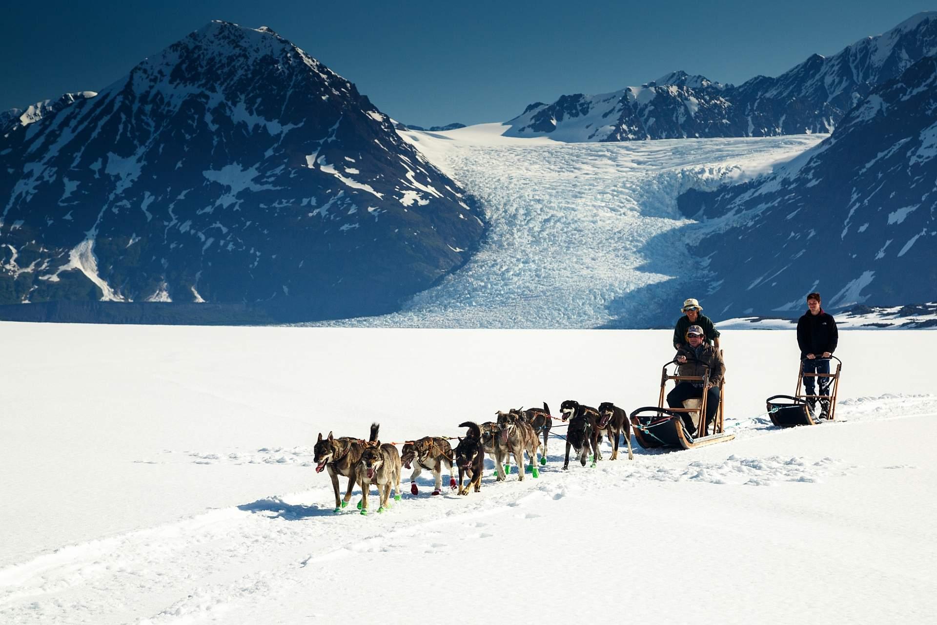 Jeff Schultz Mushing Tour Chugach Mountains 150613 4 M6744