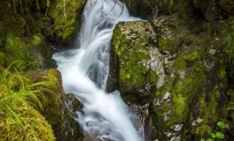 Jeff Schultz Virgin Creek Falls 140901 4 M5004