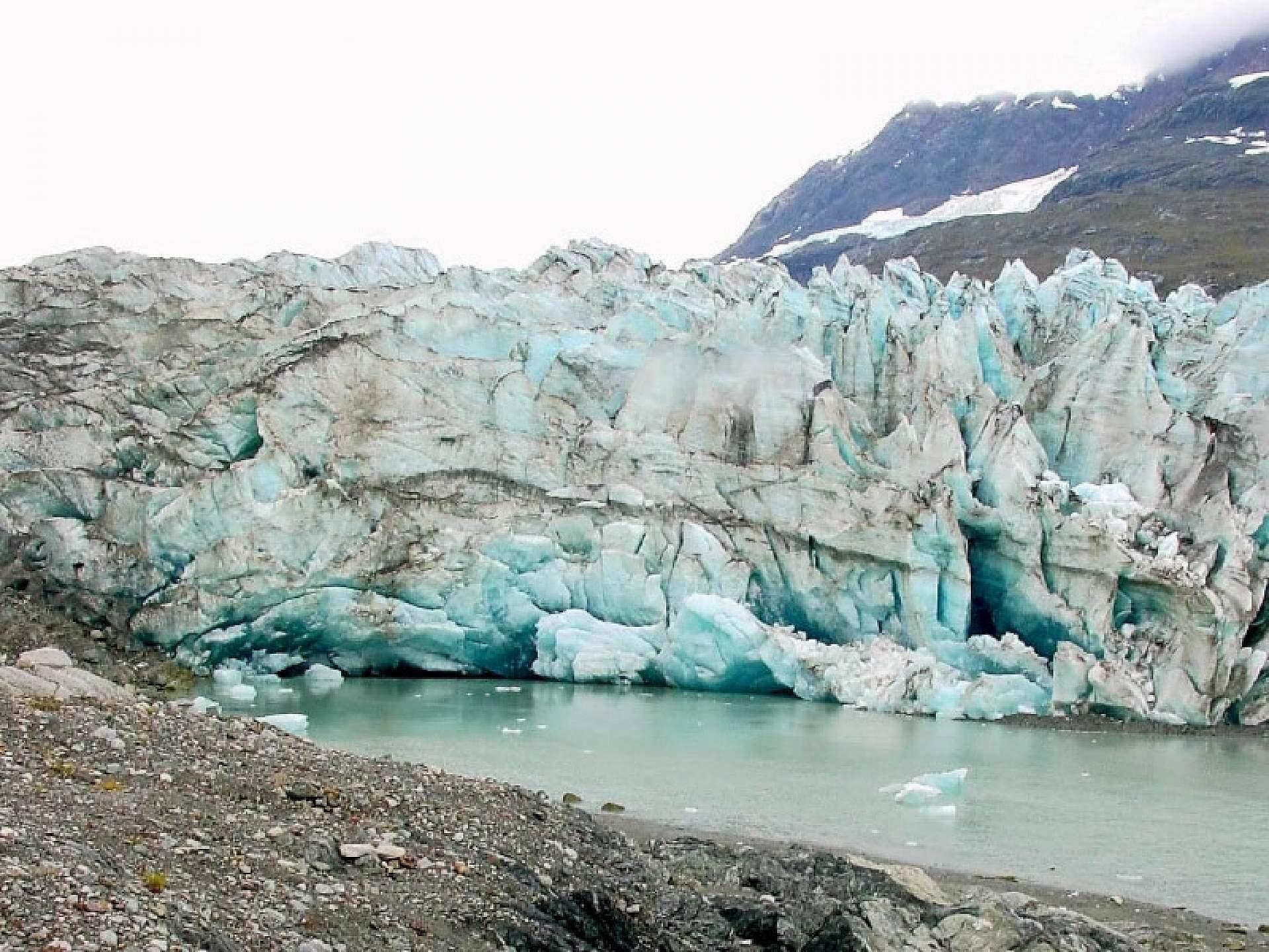 Bruce Molnia Glacier Photos Lamplugh Glacier View1 2003